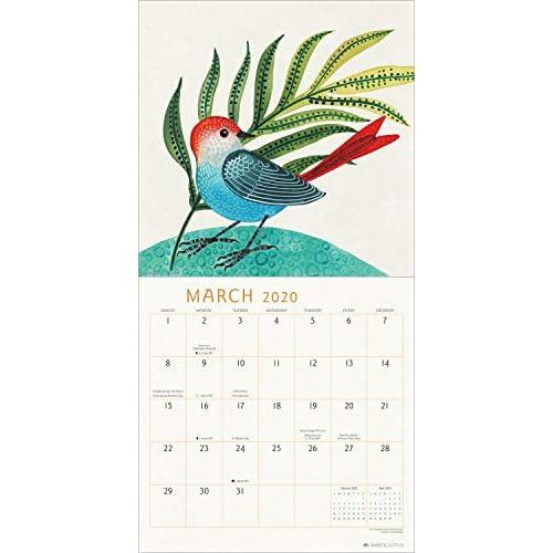 Buy Feathered Friends 2020 Wall Calendar Watercolor Bird