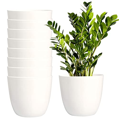 Ubuy Indonesia Online Shopping For Gardening Pots Planters Accessories In Affordable Prices