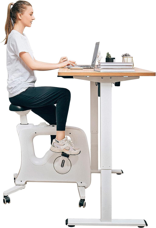 Famous Tiktok Desk Bike Chair, Standing Desk Stationary Bike