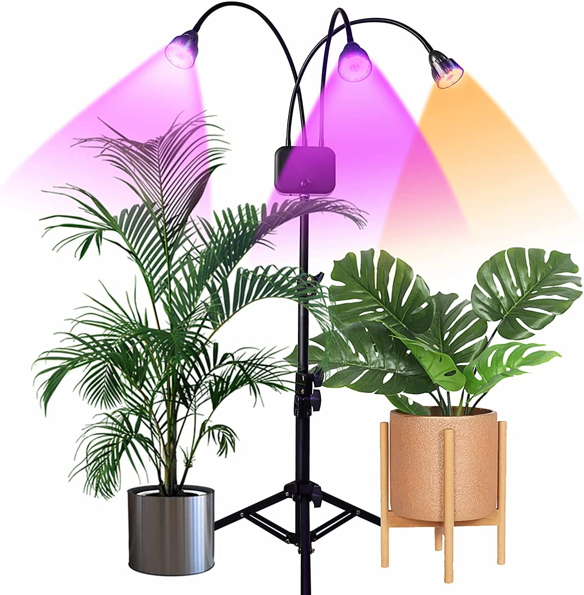Buy Grow Lights with Stand,Juhefa Full Spectrum Tri-Head 60W LED Floor  Plant Light for Indoor Plants,Timing 3/9/12H,Tripod Adjustable 15-47 inch  Online in Indonesia. B07XY2VPTJ